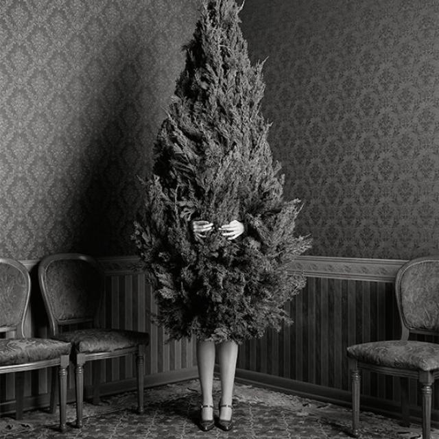 dona-i-arbre-de-nadal